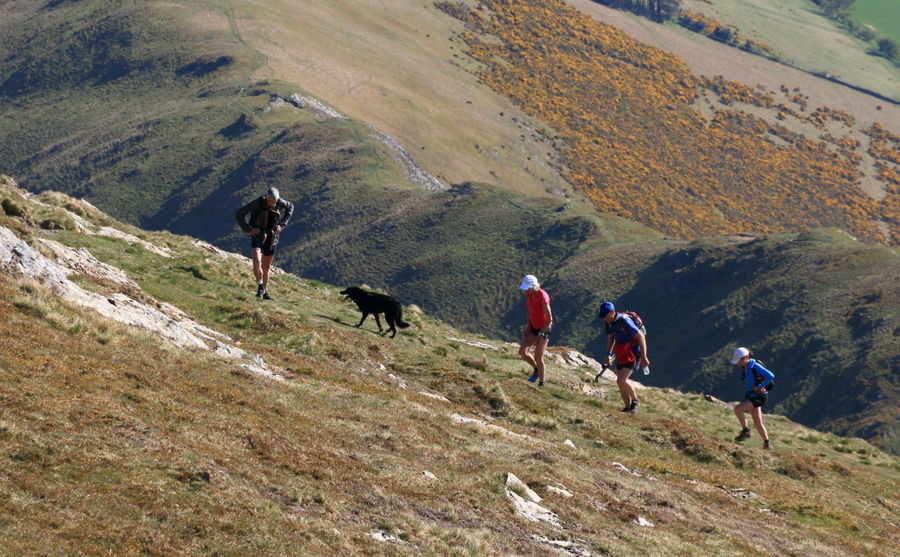 Some very experienced fell runners, conspicuously NOT running the uphills, 149 kb