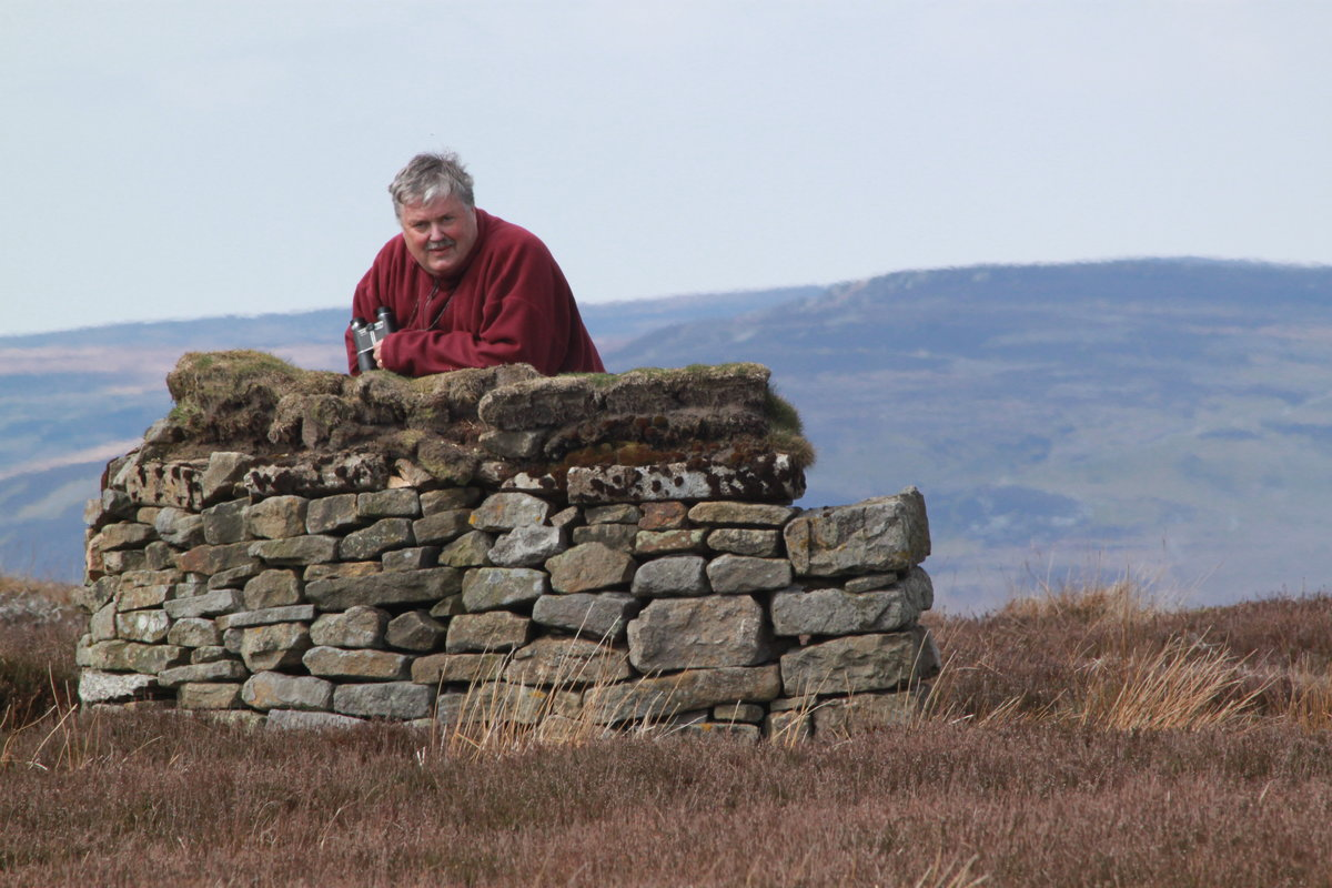 Dr Mark on a grouse moor, hunting for raptors in vain, 174 kb